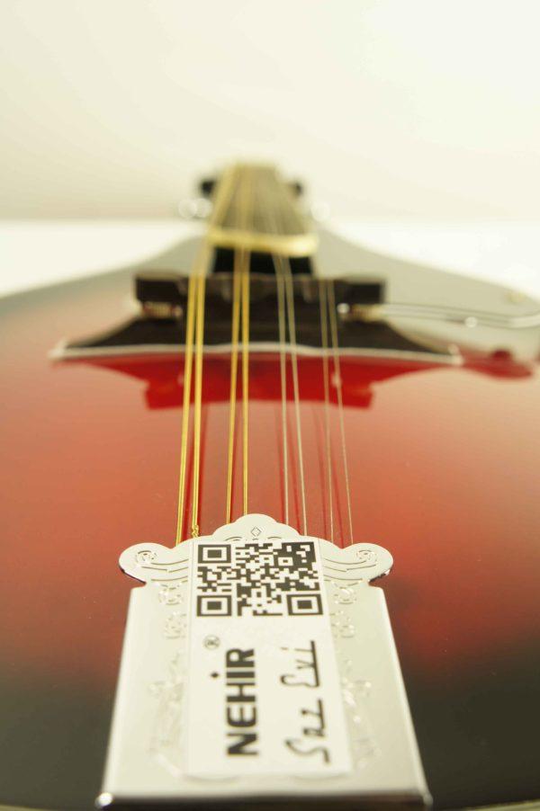 mandolin_smoky_mountain_SM60BCS_5